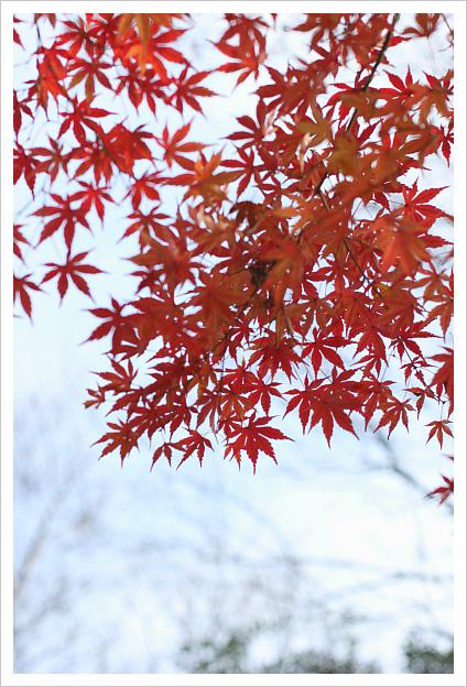 2012-12-23-3-1.jpg