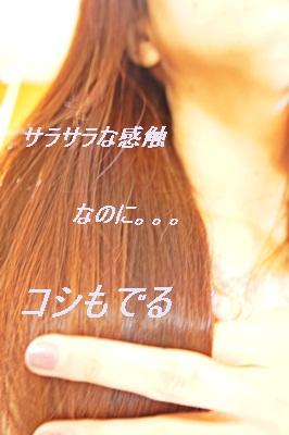 DSC01171.jpg
