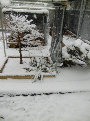 13時10分の雪