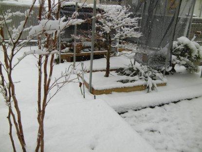 13時10分の雪2