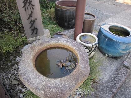 24井戸替1