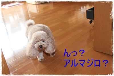 2012_0517_113257-IMG_6900.jpg