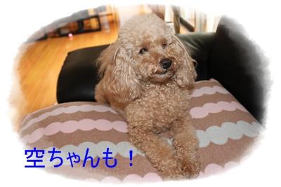 2012_0524_131240-IMG_7095.jpg
