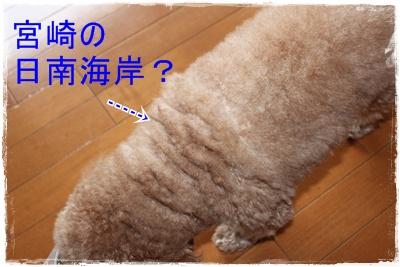 2012_0524_175252-IMG_7102.jpg