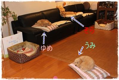 2012_0528_214517-IMG_7122.jpg