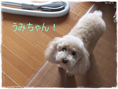 2012_0530_090623-DSCF6004.jpg