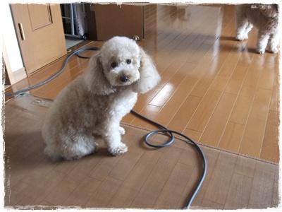 2012_0604_085715-DSCF6032.jpg