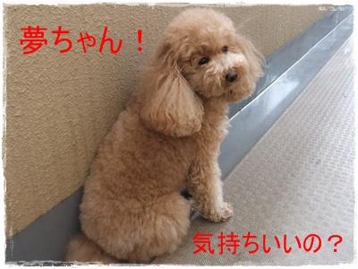 2012_0604_121007-DSCF6047.jpg