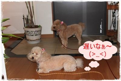 2012_0605_191525-IMG_7152.jpg
