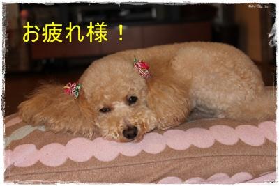 2012_0605_222226-IMG_7159.jpg