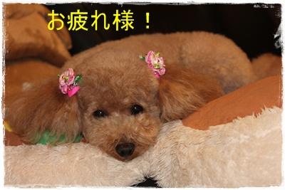 2012_0605_222259-IMG_7161.jpg