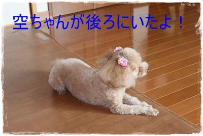 2012_0606_082529-IMG_7172.jpg