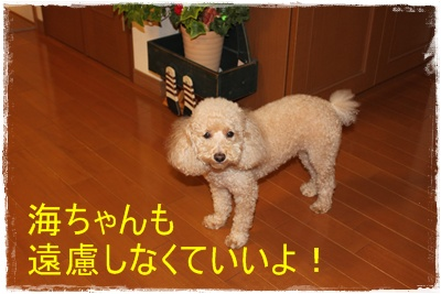 2012_0626_205533-IMG_7324.jpg
