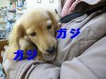 凛太郎2-21-3