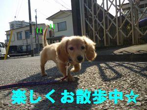凛太郎2-28-4