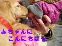 凛太郎2-28-7