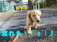 凛太郎2-28-10