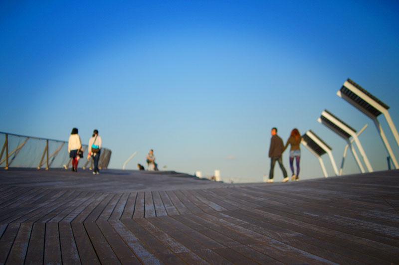 141115大さん橋散景3