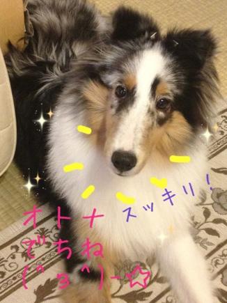 fc2blog_20120910172327a61.jpg