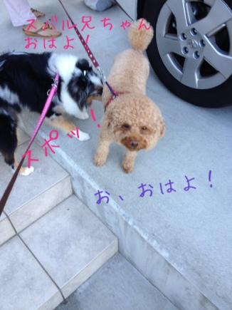 fc2blog_201209121458162c0.jpg