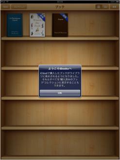 iBookStore250306_01