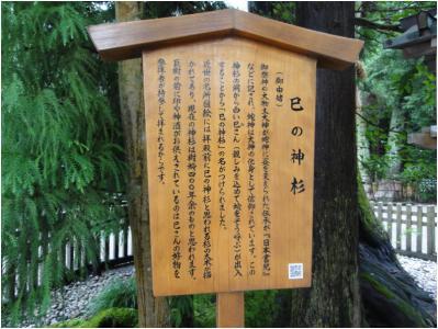 大神神社240814_2_05