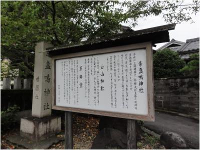 240814_3_桜井_11