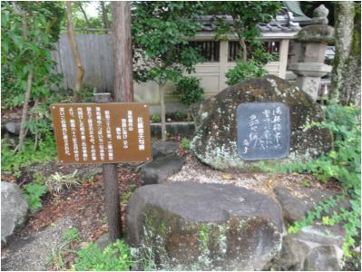 240814_3_桜井_24