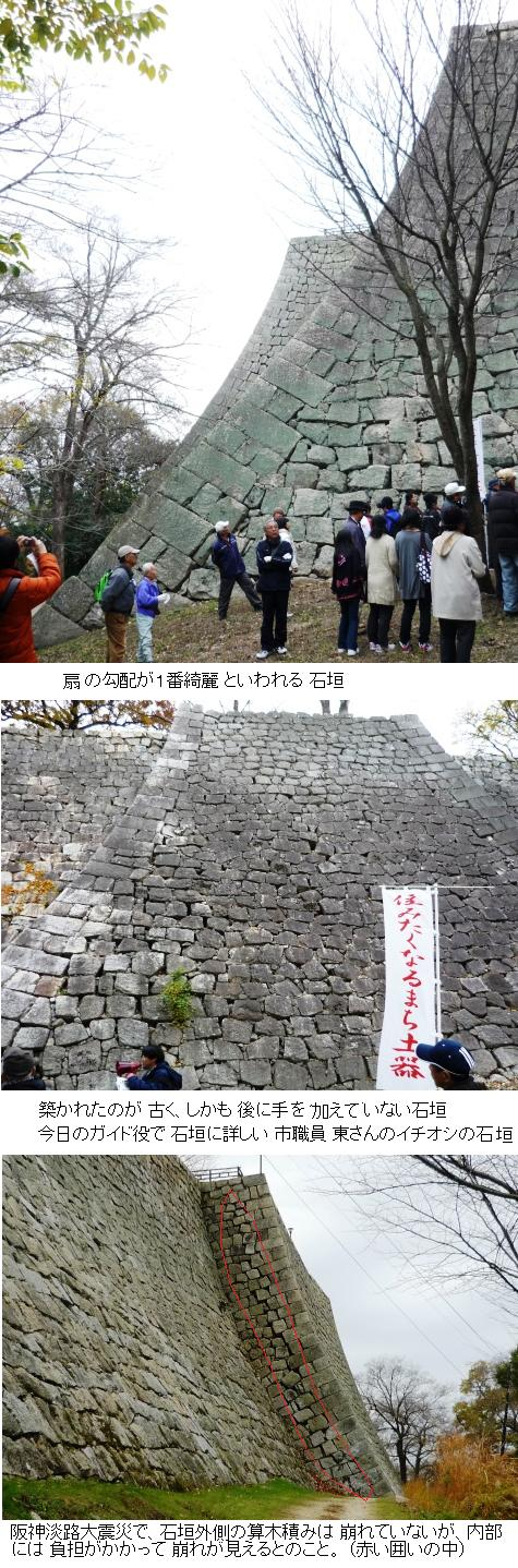 a石垣2P1200377
