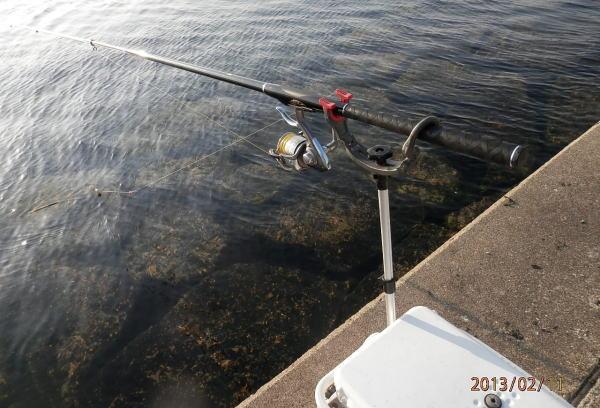 8:25 釣り開始