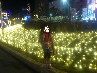 399_20121227160918.jpg