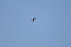 Hyakuri AB_F-4EJ_227