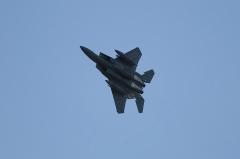 Hyakuri AB_F-15J_219