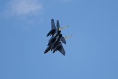 Hyakuri AB_F-15J_220
