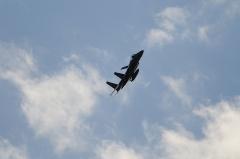 Hyakuri AB_F-15J_224