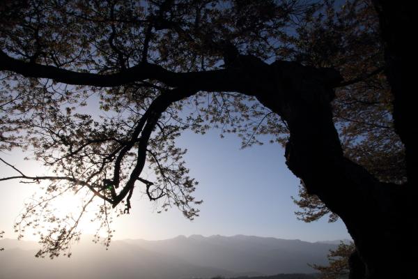 2012_0428_38.jpg