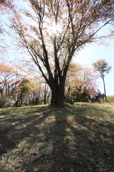 2012_0429_2_22.jpg