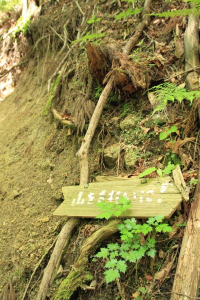 2012_0526_23.jpg