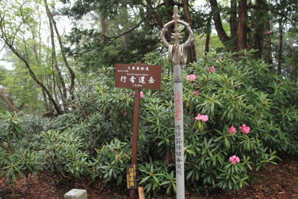 2012_0603_32.jpg