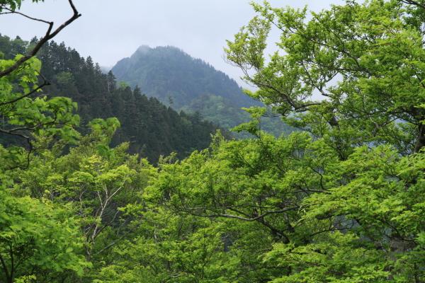 2012_0603_41.jpg
