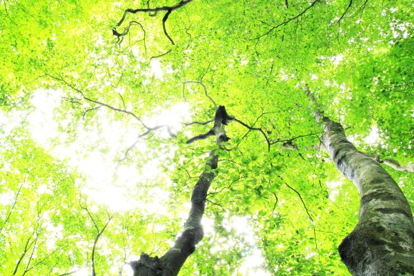 2012_0610_1_50.jpg
