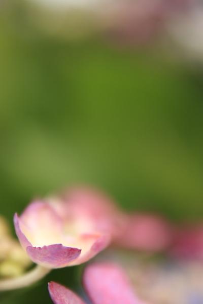 2012_0623_1_3.jpg