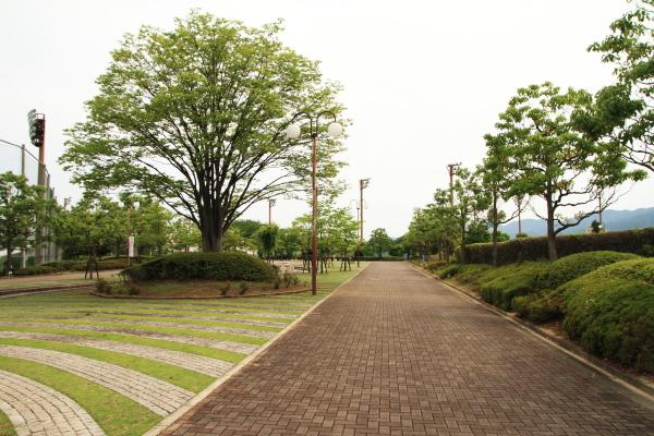 2012_0623_1_8.jpg