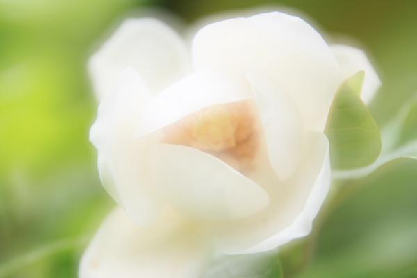 2012_0708_2_51.jpg