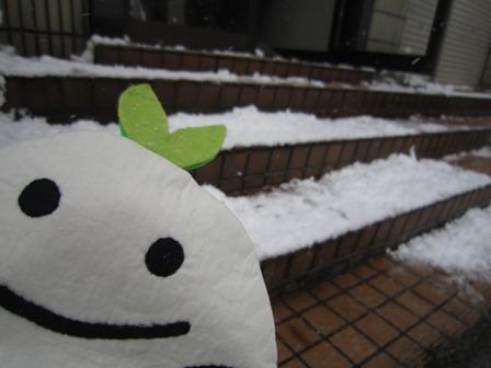 2012-12根雪