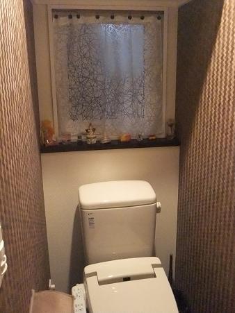 トイレ 夜