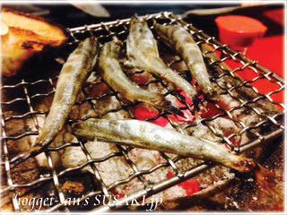 20140103じゃりんこ7