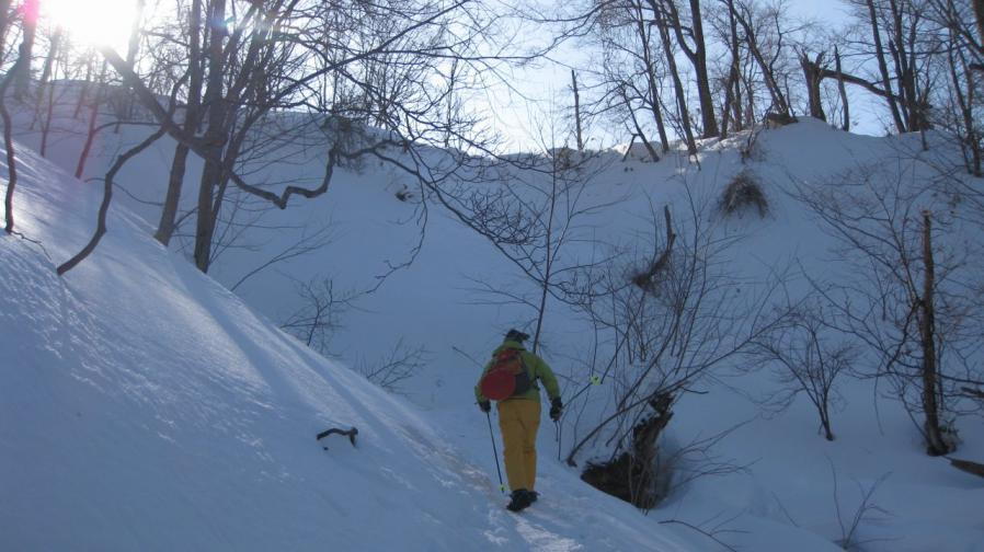 moiwa-hike0202-005.jpg