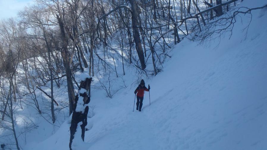moiwa-hike0202-010.jpg
