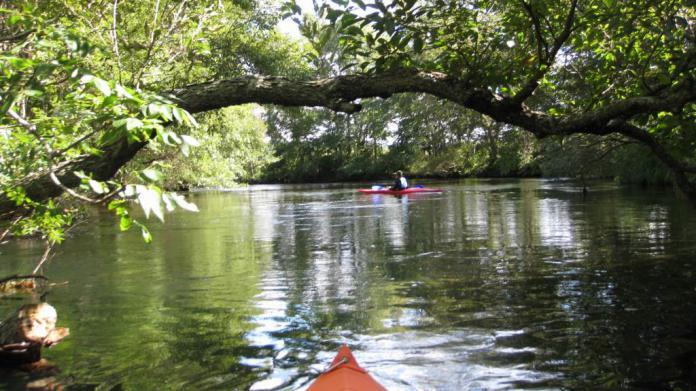 wako-kayak008.jpg